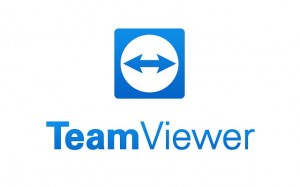 TeamViewer Corporate 1 rok